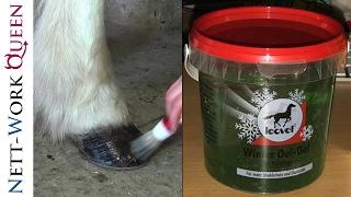 Pflegetips für Dein Pferd im Winter! Leovet Winter Öl Gel | Gepflegte + gesunde Hufe! Islandpferde