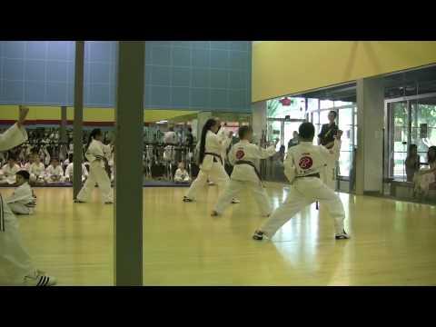 Alek's Brown Belt Test -  Kata