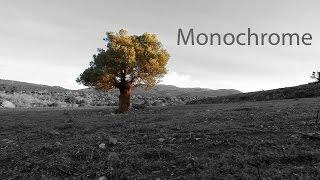 Monochrome (GH2 Short Film)