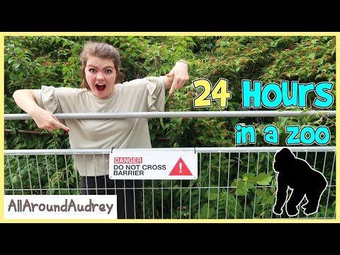 Xxx Mp4 24 Hours In A ZOO AllAroundAudrey 3gp Sex