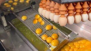 अंडे खाने वाले लोग इस वीडियो को जरूर देखें