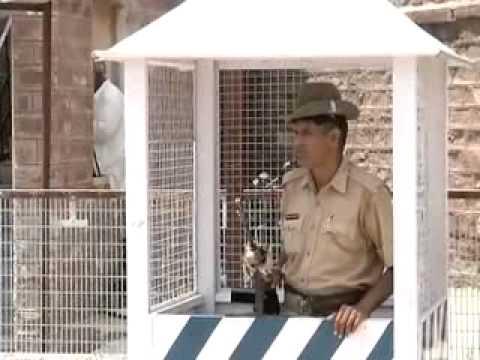 Xxx Mp4 Bail Application Of Rape Accused Asaram Bapu Rejected 3gp Sex