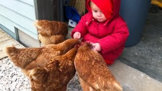 ADORABLE BABIES Love Chicken Compilation