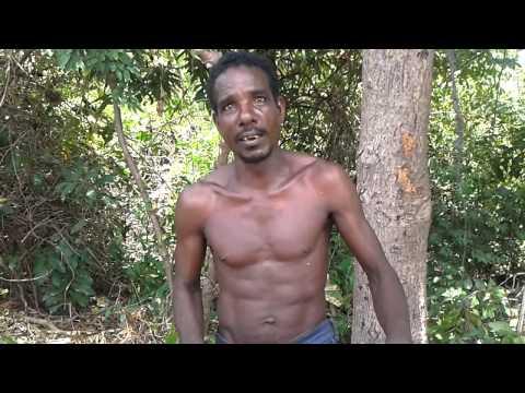 Xxx Mp4 Jamaica Best Pussy Eater Part 2 3gp Sex