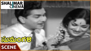 Sumangali Movie || Savitri & Nageswara Rao Best Love Scene || Akkineni Nageswara Rao, Savitri