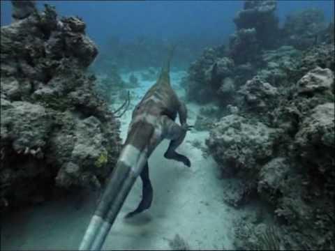 Caminando entre Dinosaurios Especial Monstruos del Océano 3 9