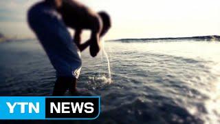 바다, 생명수를 만들다 / YTN (Yes! Top News)