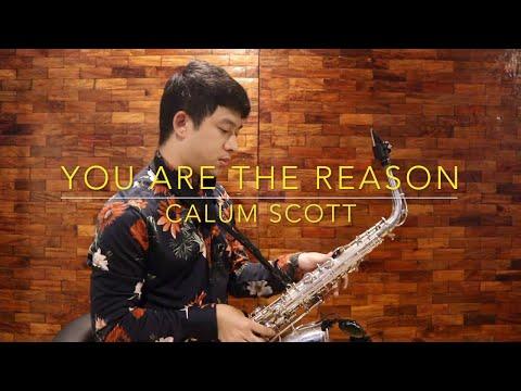 You Are The Reason - Calum Scott (Saxophone Cover)