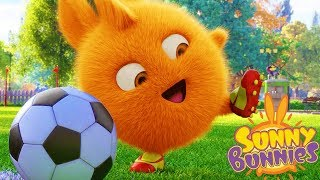 Cartoons for Children | Sunny Bunnies - SOCCER PLAYER | SUNNY BUNNIES | Funny Cartoons For Children