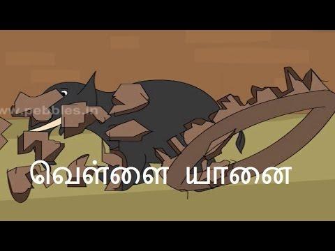 வெள்ளை யானை - Asian Folk Tales in Tamil - White Elephant