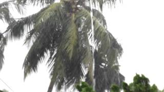 Rainy day in my village