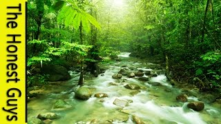 GUIDED SLEEP MEDITATION: Talk-down with Mountain Stream Nature Sounds