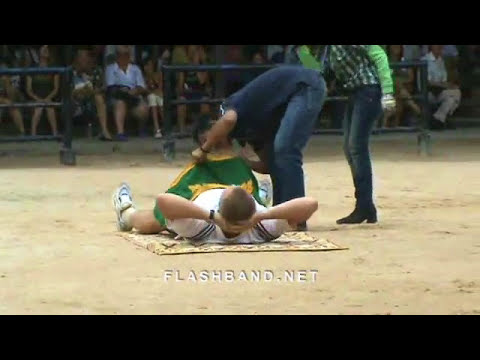 Funny and Cute Elephants or Animal abuse