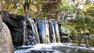 37 surah in 37 minutes - One of the World's Best Quick Quran Recitation in 50+ Languages