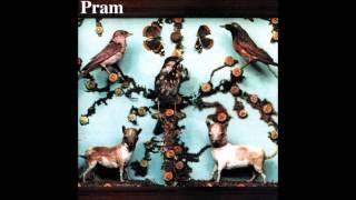 Pram - Mother of Pearl