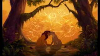 Lion King 1 1/2 Can You Feel The Love Tonight Version.