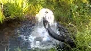 Artesian Well.3gp