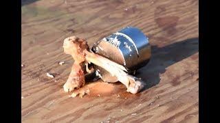 Neodymium Magnets CRUSH Bone!!