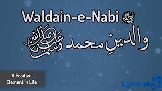 Waldain- e-Nabi(ﷺ) Emotional Story by Zulfiqar Ahmad Naqshbandi | Light of Islam