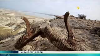 Экспедиция в Баянаул