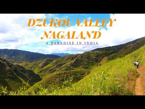 Xxx Mp4 NAGALAND Dzukou Valley Nagaland Tourism Incredible India Anuja Joshi 3gp Sex