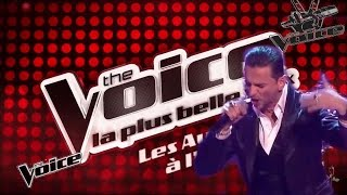 Depeche Mode VS The Voice (Heaven)