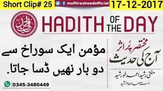Hadith of the day | Momin aik sorakh se do bar nahi dasa jata Mufti Rasheed Ahmed Khurshid