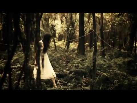 Xxx Mp4 The Paper Kites Bloom Official Music Video 3gp Sex