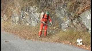 Strada del Farno, volontari al lavoro per prevenire gli incendi