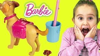 Barbie ve Köpeği Tuvalet Eğitimi | Evcilik TV Barbie oyuncak videoları