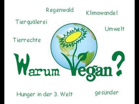 Veganismus: Warum vegan? kurz & knapp