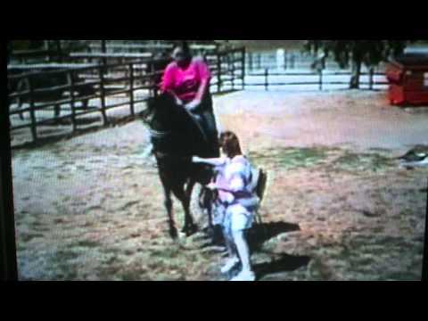 Xxx Mp4 Fat Lady Falls Off Horse 3gp Sex
