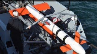 Northrop Grumman's AQS-24b towed mine hunting sensor