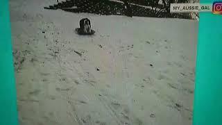 Dog sledding on own, carries own sled