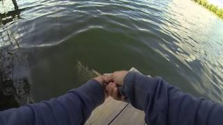 попутчика на рыбалку киев