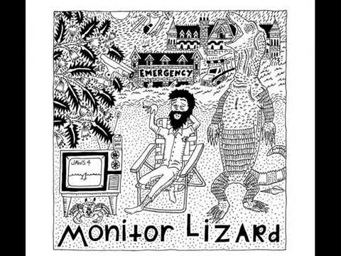 Monitor Lizard - Demo
