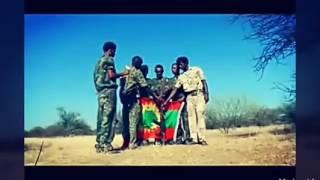 WBO ↔OLF↔ ABO Oromo Music 2017