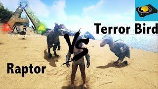 Ark Insight -- Raptor V.S Terror Bird