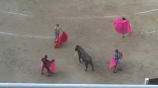 Stierengevecht in Madrid