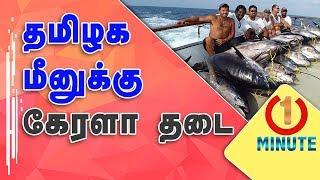 Kerala ban for Tamil Nadu fish | Formalin Chemical Issue