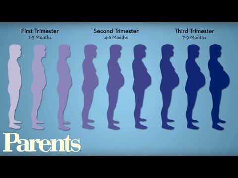 Xxx Mp4 Pregnancy Workouts Best 10 Minute Workout Parents 3gp Sex