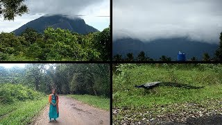Day 2 ||Travel with Us to Parambikulam|| Ride in Anamalai Forest ||Singing and Funny Times