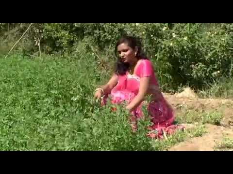 Desi girl videos bhabhi