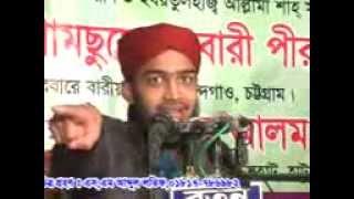 new Bangla waz 2017, SAYED MOKARRAM BARI, DARBARE BARIA SHARIF.01879381046