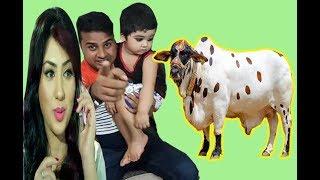 এবারের ঈদে কি কোরবানি দিচ্ছেন অপু !! গরু না খাসি !!-Apu Biswas Eid Celebration