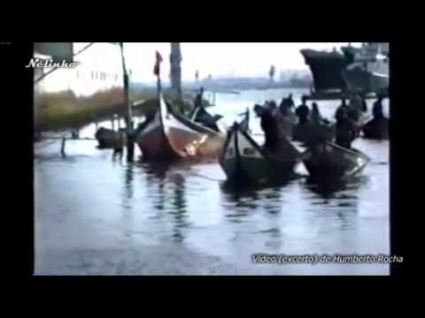 Derespeito pela Gafanha da Nazaré GNMT