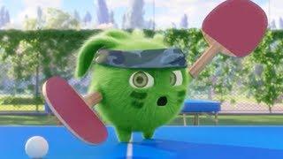 Sunny Bunnies | Hopper the Ping Pong Ninja | COMPILATION | Cartoons for Children | WildBrain