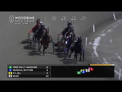 Woodbine, Mohawk Park, February 18, 2019 Race 8