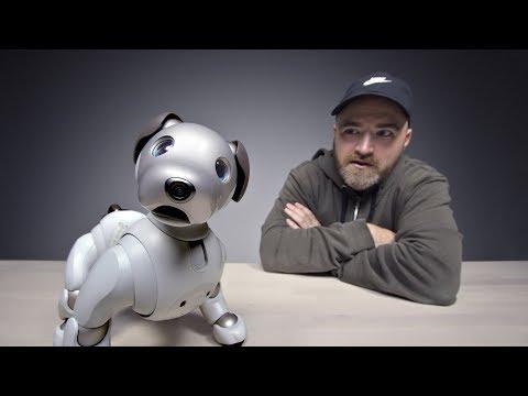 Xxx Mp4 The 3000 Sony Aibo Robot Dog 3gp Sex