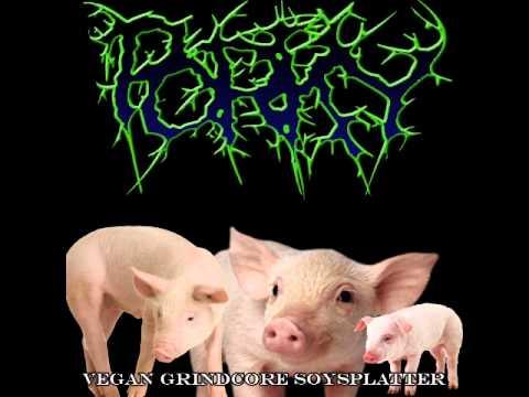 Porky - Vegan Grindcore Soysplatter (2015)